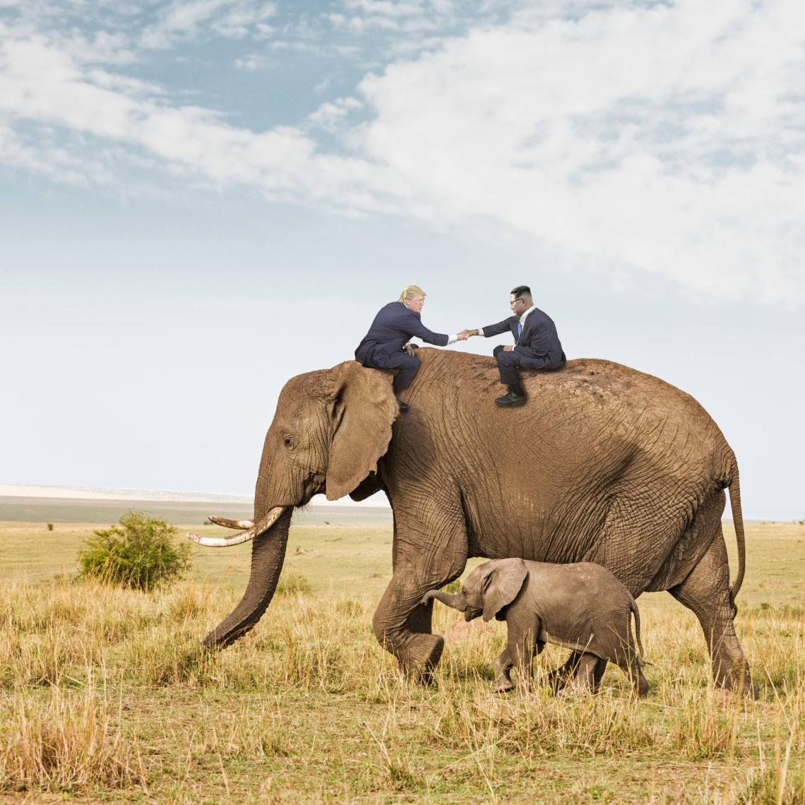 elephant-trump-kim
